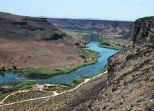 Snake River Greifvögel Lizenzfreies Stockbild