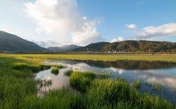 Snake River morning reflections along grassy banks at Alpine Wyoming Stock Images