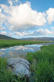 Snake River in the morning under cumulus cloudscape  in Alpine Wyoming Royalty Free Stock Photo