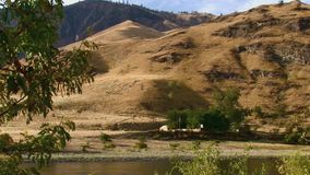 Snake river scene Hells Canyon Snake River Idaho. NA JSE Film nXcorps TV©2017 Stuart Edmondson stock video footage