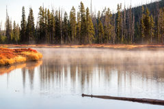Snake River in Yellowstone Royalty Free Stock Photography