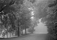 Snake Road Foggy Morning - Black & White Royalty Free Stock Images