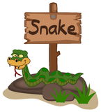 Snake on a rock with panel Royalty Free Stock Image