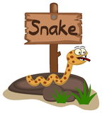 Snake on a rock with panel Royalty Free Stock Photo