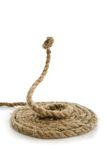 Snake from rope on white Royalty Free Stock Photos