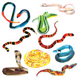 Snake set. Of colorful snakes low poly design  on white background Stock Photo