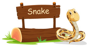 A snake beside a signboard Stock Image