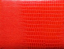 Snake skin. Texture of red snake skin Royalty Free Stock Images