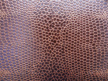 Snake skin. Leather brown snake skin background Royalty Free Stock Images