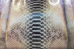 Snake Skin. Background and pattern of snake skin fashion bag Royalty Free Stock Image