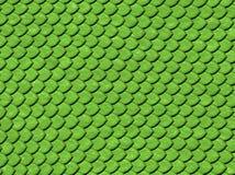 Snake skin Stock Image