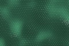 Snake Skin Background Stock Photography