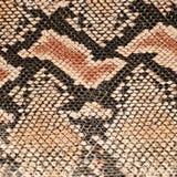 Snake skin background Stock Images