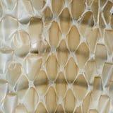 Snake skin background Stock Image