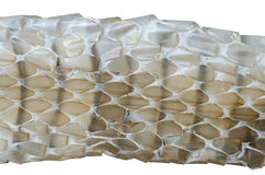 Snake skin background Stock Photo