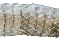 Snake skin background. Closeup of snake skin background Stock Photo