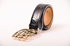 Snake skin belt Stock Image