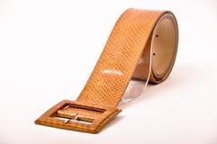 Snake skin belt Stock Photography