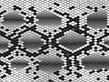 Snake skin in black and white Royalty Free Stock Photo