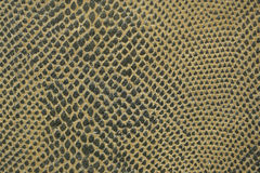 Snake skin fabric macro Stock Images