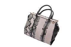 Snake skin leather bag. See my other works in portfolio Royalty Free Stock Photo