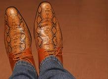 Snake skin leather shoes. Stock Image