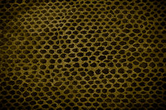 Snake Skin Leather Texture Royalty Free Stock Photo