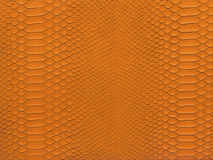 Snake skin orange color. Snake skin closeup pattern orange color for background Stock Photo