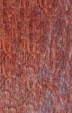 Snake skin organic pattern background backdrop detailed luxury texture wallpaper. Red royalty free stock images