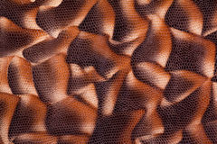 Snake skin pattern Royalty Free Stock Images