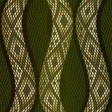 Snake skin pattern Stock Image