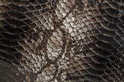 Snake skin pattern background Stock Photo