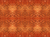 Snake skin pattern Stock Images