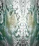 Snake skin pattern royalty free stock photo