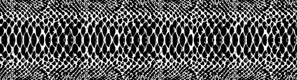 Snake skin pattern texture repeating seamless monochrome black & white. Vector. Texture snake. Fashionable print. Royalty Free Stock Images