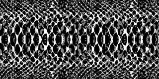 Snake skin pattern texture repeating seamless monochrome black & white. Vector. Texture snake. Fashionable print. Royalty Free Stock Image