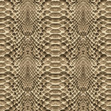 Snake skin pattern texture repeating seamless. Vector. Texture snake. Fashionable print. Royalty Free Stock Image
