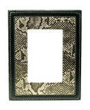 Snake skin picture frame Royalty Free Stock Photo