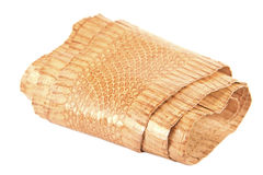 Snake skin roll Stock Images