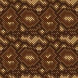 Snake skin seamless pattern. Vector illustration. eps 8 Stock Image