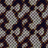 Snake Skin Texture Stock Images