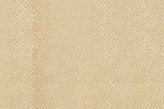 Snake skin texture. High quality snake skin pattern Royalty Free Stock Image