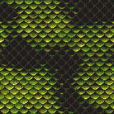 Snake Skin Texture. Abstract illustration of snake skin texture as background Royalty Free Stock Images