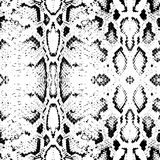 Snake skin texture. Seamless pattern black on white background. Vector Stock Photography