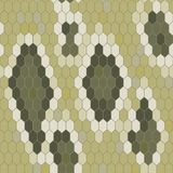 Snake skin texture. Seamless pattern python. Vector Stock Photos