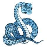 Snake. Snake watercolor. Stock Photo