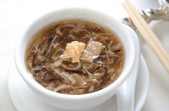 Snake soup. Chinese simmered mushroom snake soup stock image