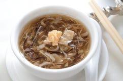 Snake soup Stock Image