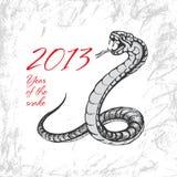Snake symbol 2013. On grunge background Stock Photography