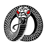 Snake tattoo. Angry snake round tattoo isolated Stock Image